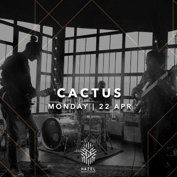 Hazel Rooftop Lounge-Cactus Live Act