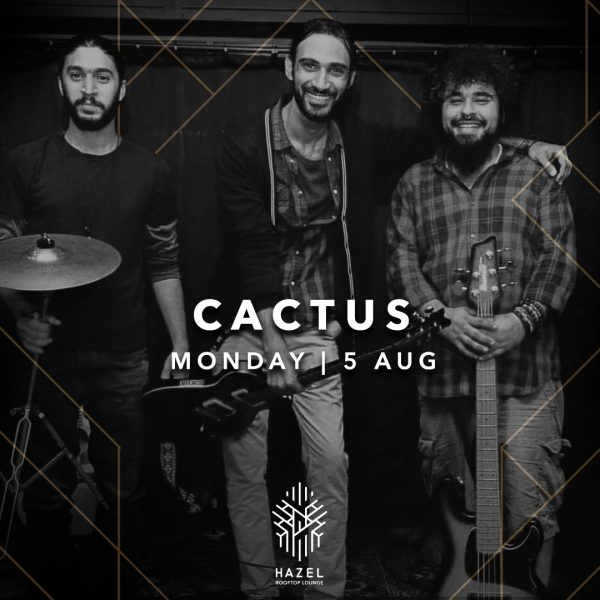 Hazel Rooftop Lounge - Cactus Live Act