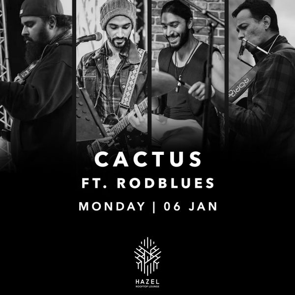 Hazel Rooftop Lounge - Cactus - 6 January